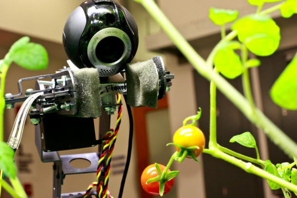 photo of gardening robot from MIT's Distributed Robotics Laboratory