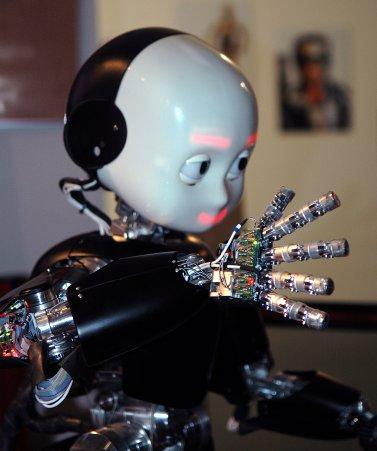 Robohub_iCub_humanoid_robot