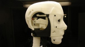 assembled head of Gael Langevin's animatronic InMoov robot