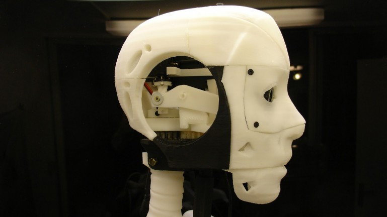 assembled head of Gael Langevin's animatronic InMoov robot