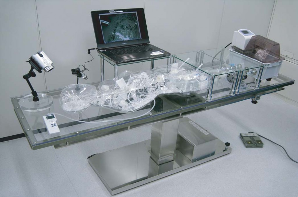 Micro Robotics And Medicine Interview With Toshio Fukuda