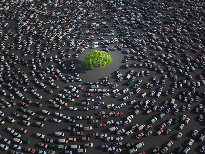cars_traffic_aerial_tree