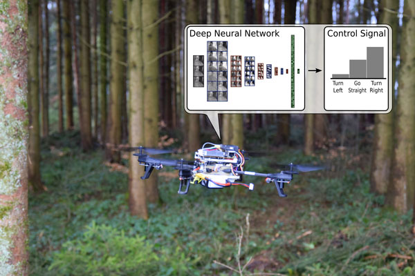 Quadrotor in forest making a directional decision
