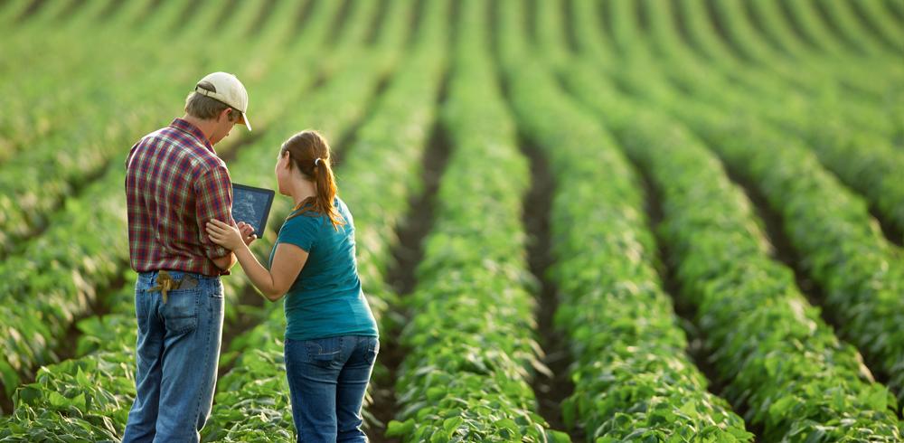 Farming with robots   Robohub