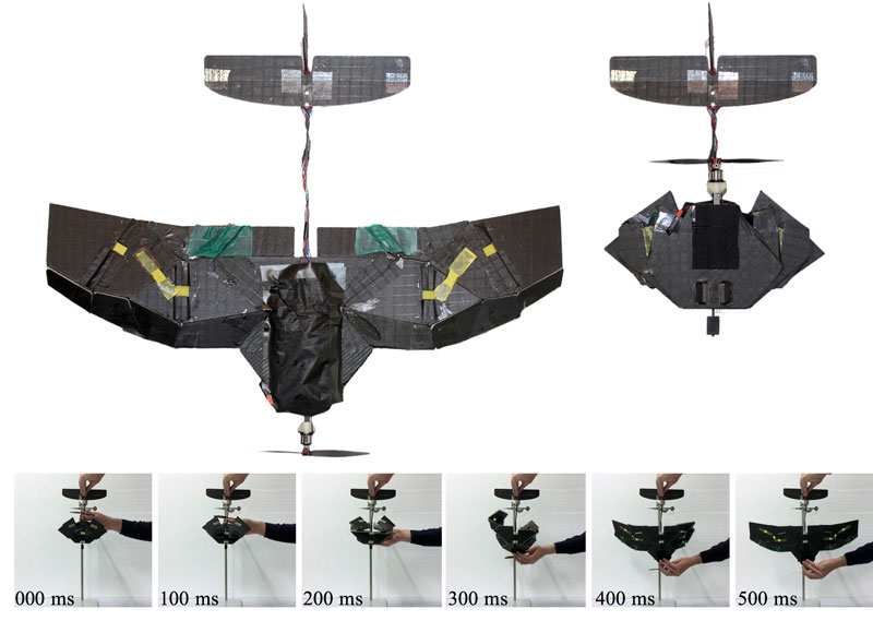 foldable_drone_resized