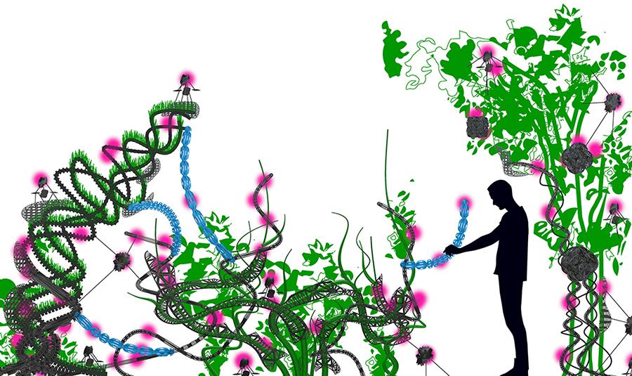 flora-robotica-concept-sketch