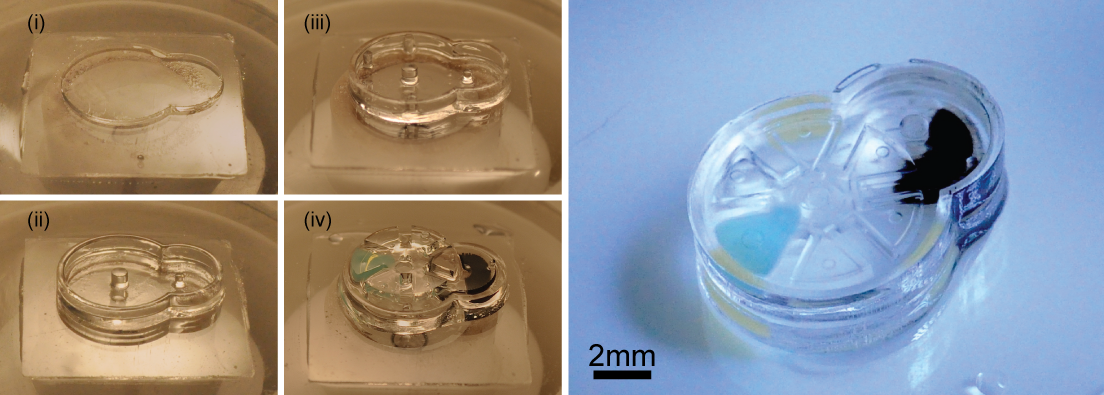 Fabrication and complete assembly of a Geneva drive device using the iMEMS method. The left panel shows the layer-by-layer fabrication of support structures and assembly of gear components. The image on the right shows the complete device after the layers have been sealed. Image: SauYin Chin, Columbia Engineering.