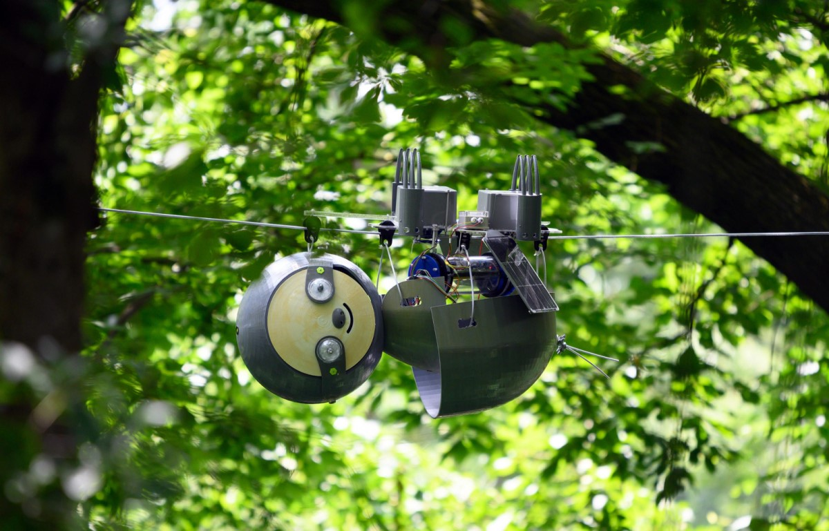 #317: Environmental Monitoring with the SlothBot, with  Gennaro Notomista