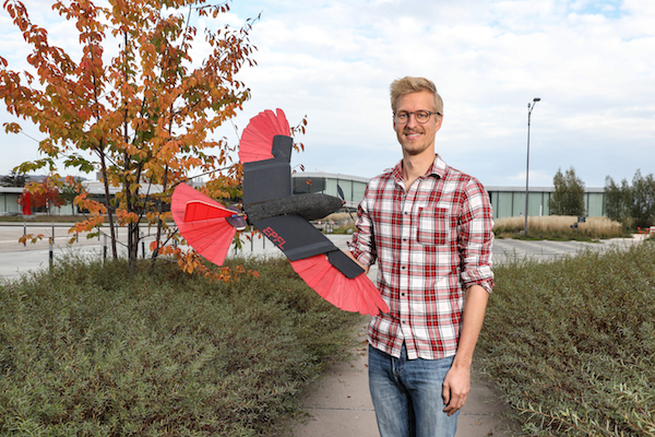 A raptor-inspired drone with morphing wing and tail