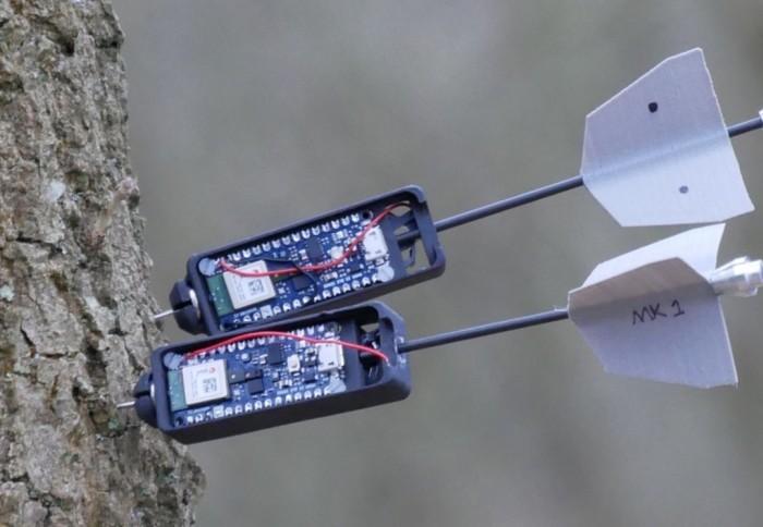 Tree sensors