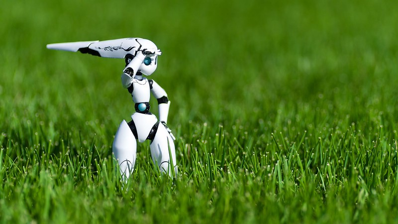 A robot in a field