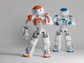NAO Next Gen now available for a wider audience
