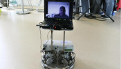 Towards independence: A shared control BCI telepresence robot